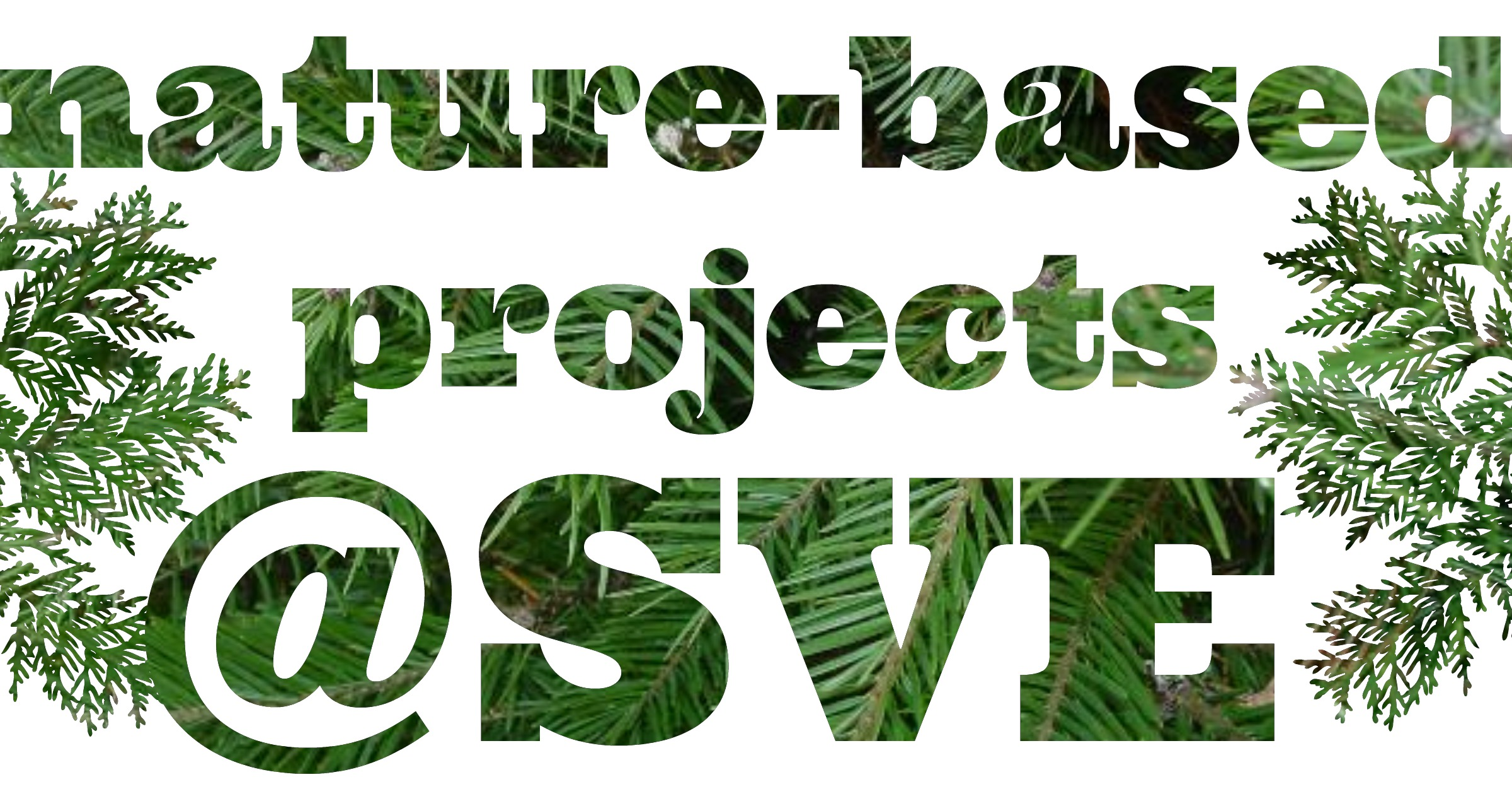 nature nased projects