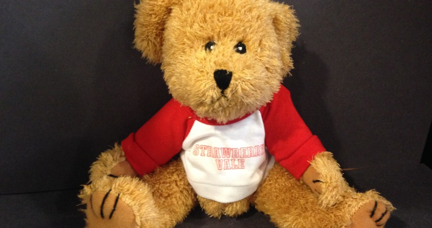 Strawberry Vale Bear